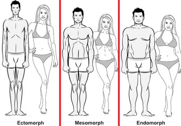 Qual seu biotipo?